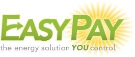 Easy Pay Website